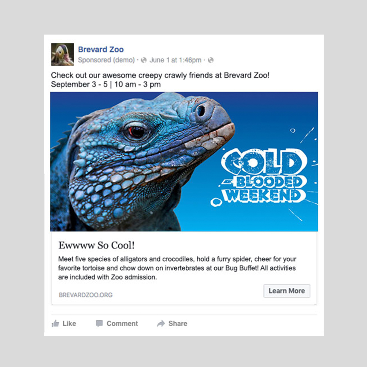 zoo digital cold blooded