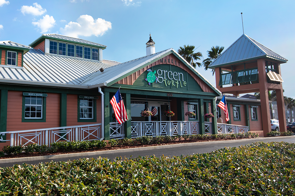 green turtle exterior